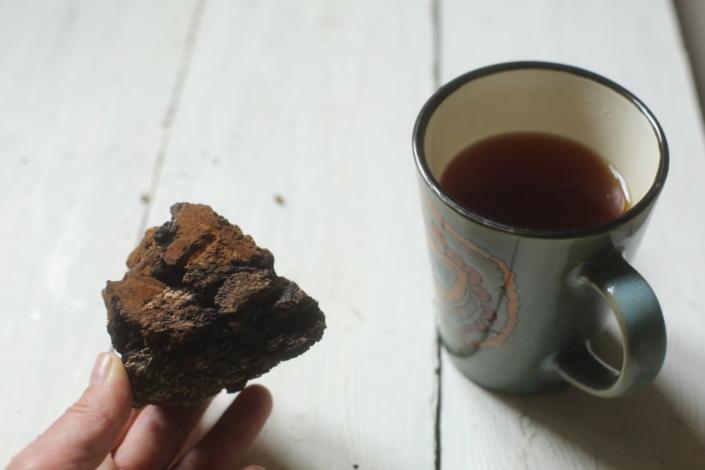 Чай из чаги — суперфуда, которому нет равных