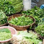 Почему, когда ешь много зелени, розовеют щеки