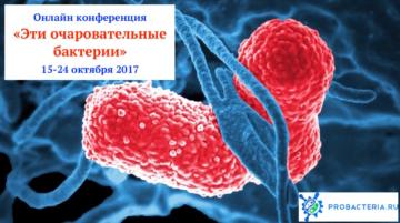 конференция очаровательные бактерии